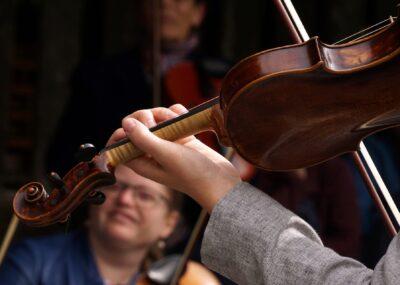 koncert skrzypce